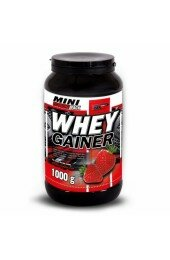 Vision,Whey Gainer (1 kg)